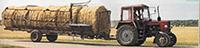 Экспорт кормов из Беларуси?